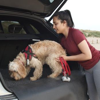 Car Boot and Bumper Protector